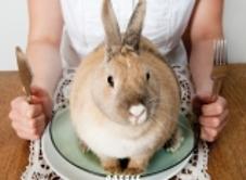 Schrijfster Karen Duve over haar boek 'Fatsoenlijk eten: Mijn leven ...: duitslandinstituut.nl/agenda/522/lezing-mijn-leven-als-proefkonijn